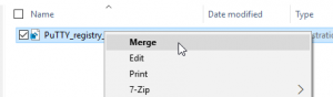 Merging PuTTY settings with the local Windows registry